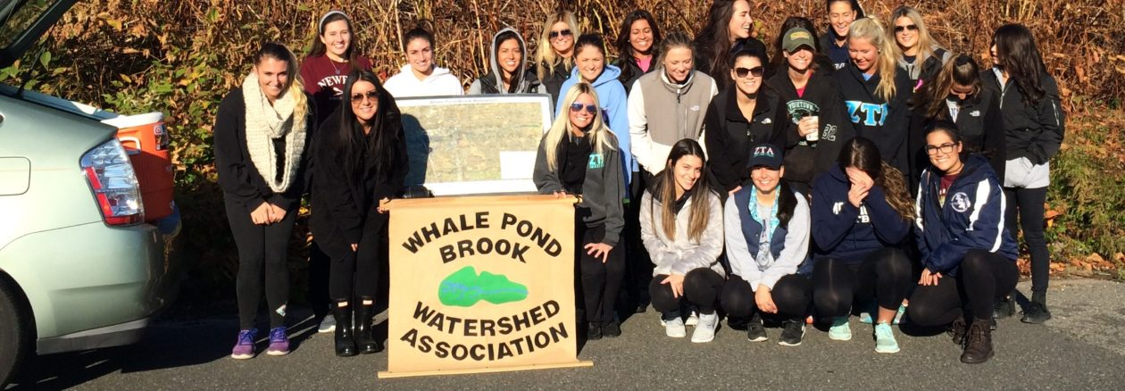Whale Pond Brook Watershed Association